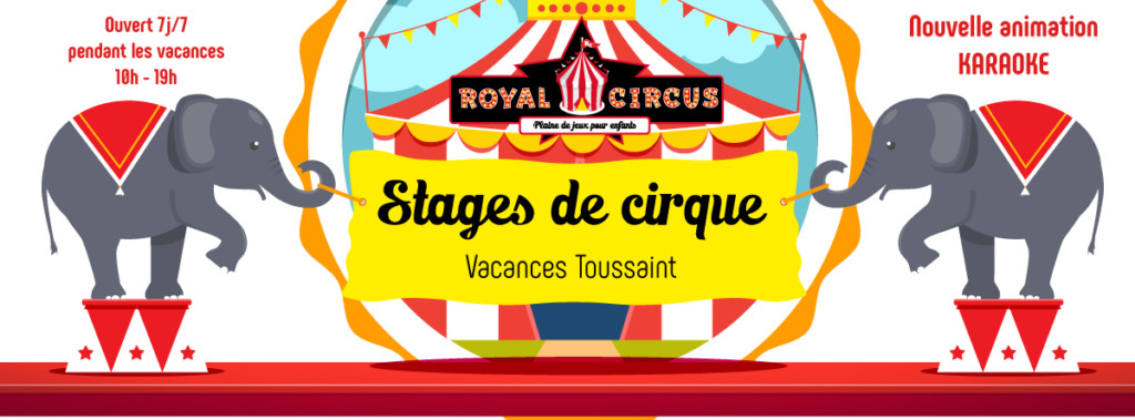 stages-de-cirque